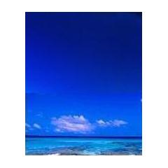青空に映える名言集 ブログパーツイメージ