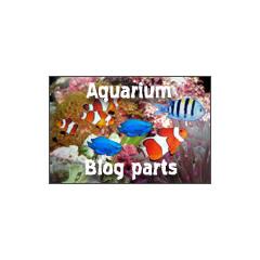 Aquarium Sea ブログパーツイメージ