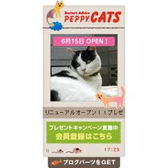 PEPPY CATS ブログパーツイメージ