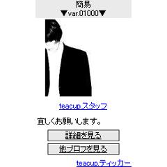 プロフィールティッカー ブログパーツイメージ