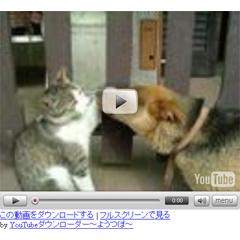 youtubeダウンローダー ブログパーツイメージ