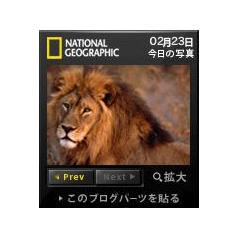ナショナルジオグラフィック 今日の写真 ブログパーツイメージ