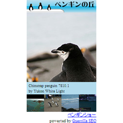 ペンギンの丘 ブログパーツイメージ