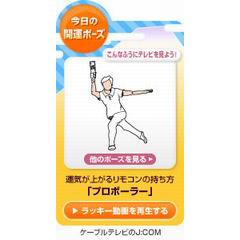 「今日の開運ポーズ」ブログパーツイメージ