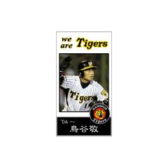 阪神タイガース名選手館 ブログパーツイメージ