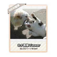 【ネタ画像Viewer】ネタ画像を次々を表示するブログパーツイメージ