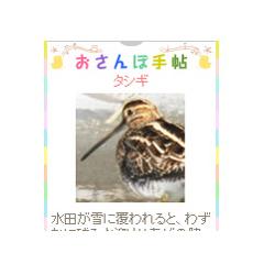 おさんぽ手帖 ブログパーツイメージ