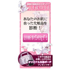 『LIBOTE化粧品』お肌の診断ブログパーツ  イメージ