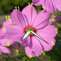 コスモスの時計 ブログパーツイメージ