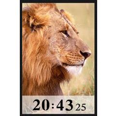 ライオン時計 ブログパーツイメージ