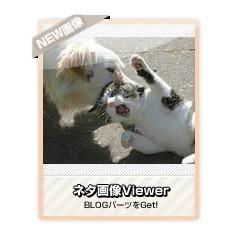 【ネタ画像Viewer】ネタ画像を次々を表示するブログパーツ サムネイル