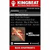 KINGBEAT PLAYER ブログパーツ サムネイル