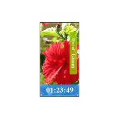 グアム時計 ブログパーツ サムネイル