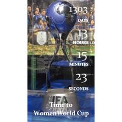 FIFA女子ワールドカップカウントダウン ブログパーツイメージ